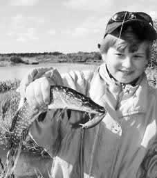 Рыбалка- спиннинг